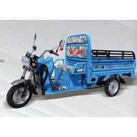 TM Electric tricycle